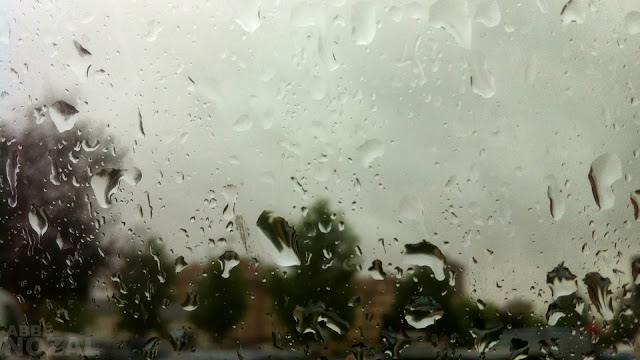 llueve, 2013 Abbé Nozal
