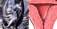 http://alienexplorations.blogspot.com/1975/07/gigers-national-park-comparison-to.html