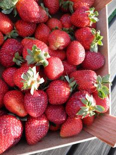 Maistuu kesä :)
