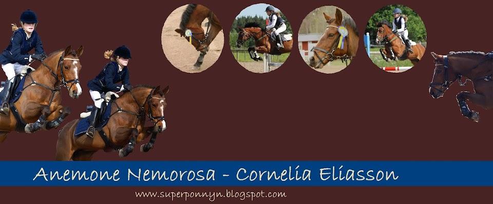 Cornelia Eliasson