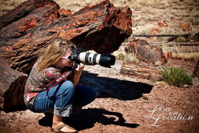 Petrified Forest National Park, Arizona, New Braunfels Photography, Lisa Blaschke CPP