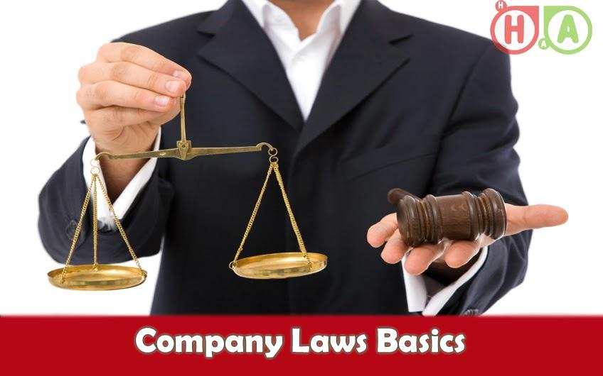 Company Laws Basics