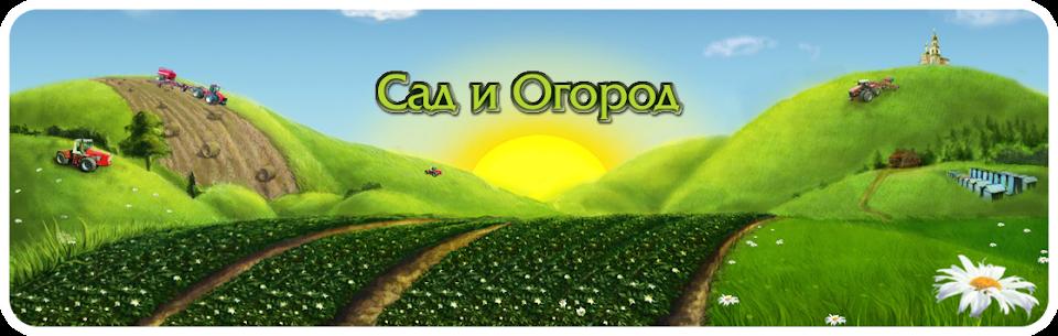 Cад и Огород