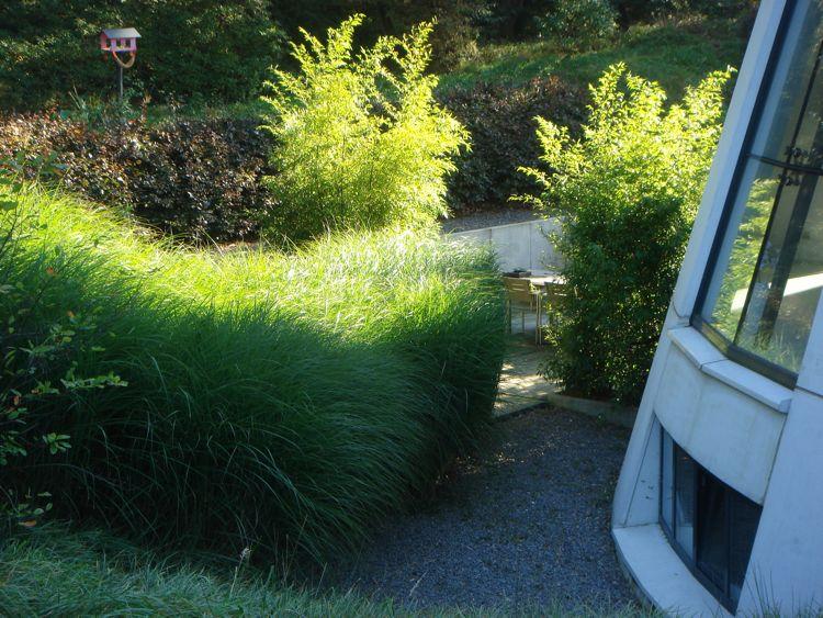 Haverum: grassgarden villa beekbergen