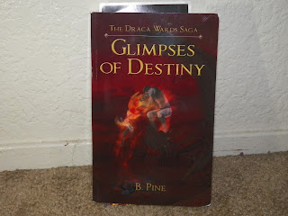 Glimpses_Of_Destiny_By_B.Pine.jpg