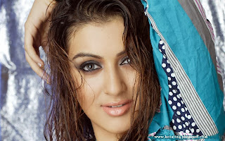 New Hansika Motwani wallpaper - New 2014 Hansika Motwani Photo - HD New Hansika Motwani Wallpapers