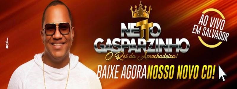 NETTO GASPARZINHO AO VIVO EM SALVADOR CD 2015