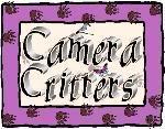 http://camera-critters.blogspot.com/