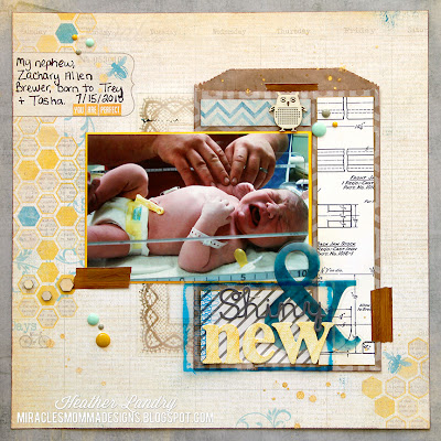Brand New Baby_Layout_Hexagons_Transparency_Dots