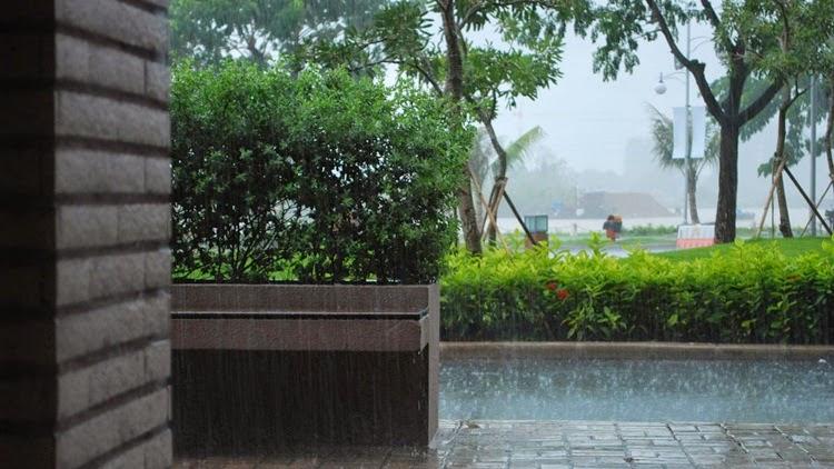 Monsoon in City