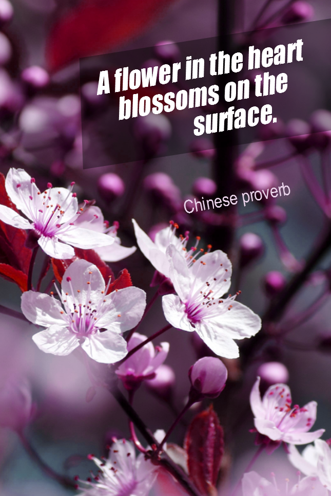 visual quote - image quotation for BEAUTY - A flower in the heart blossoms on the surface. - Chinese Proverb