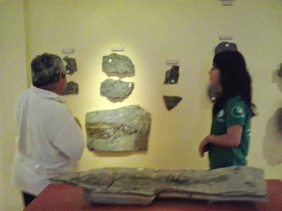 Museu de Paleontologia de Santana do Cariri