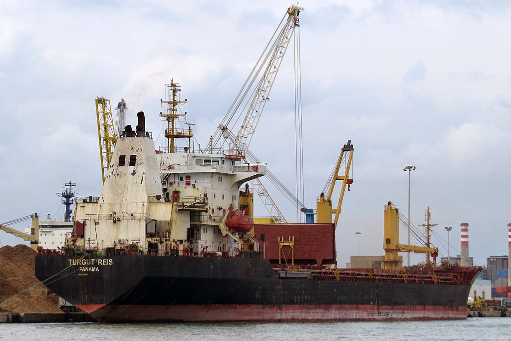 Bulk carrier Turgut Reis, IMO 8706478, port of Livorno