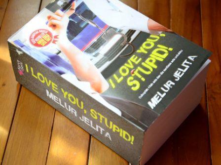 Novel: I Love U Stupid Dan My Precious Iris
