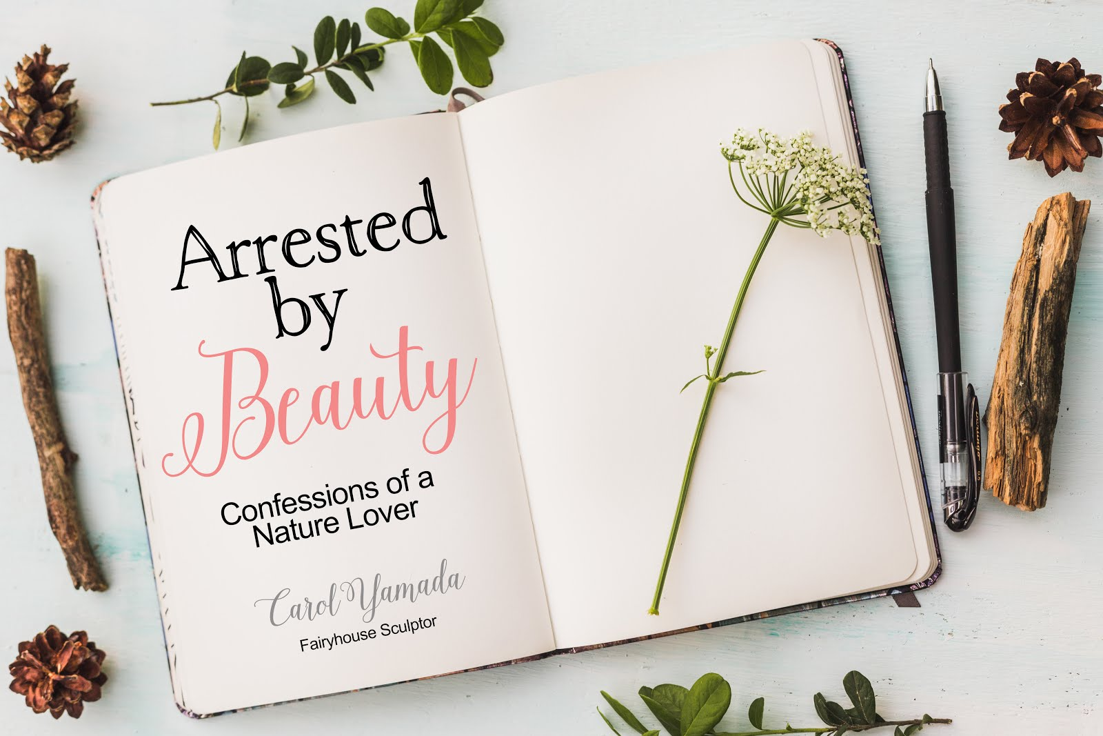 Arrested By Beauty