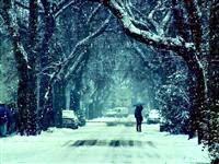 Некто одинокий хиляет по холодку в вечернем парке. Жуть.
