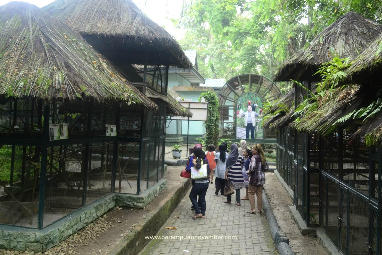 kebun binatang siantar