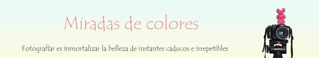 Miradas de colores