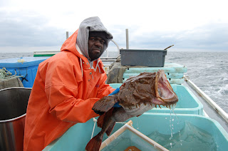 NEFSC researcher Larry Alade holds a tagged goosefish, or monkfish, prior to release during a cooperative monkfish migration study with commercial fishermen in 2009 and 2010. See related links below for more information. Credit: Pasha Ivanov