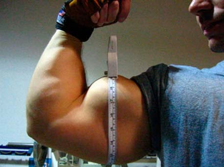 what are considered big arms destination jacked muscle