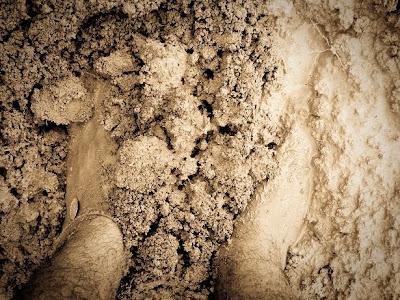 O nascimento do meu fogão a lenha