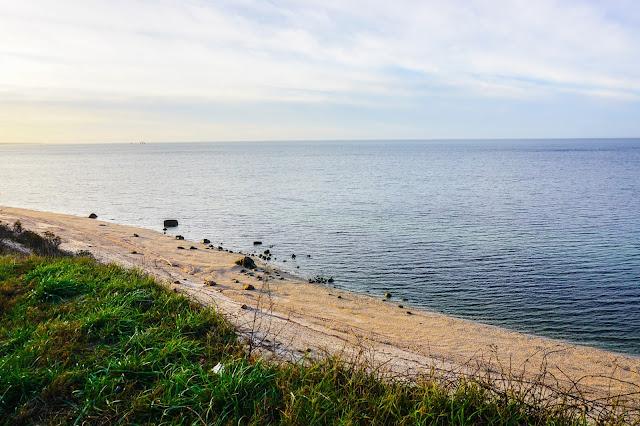 Macari Vineyard- Long Island- NY