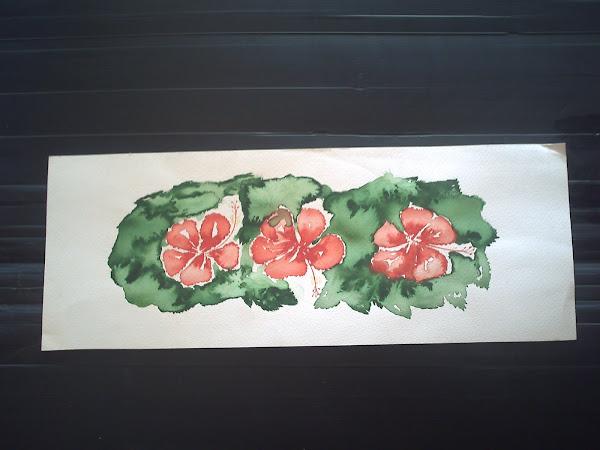 Fleur : Hibiscus