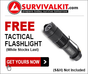 FREE Tactical Flashlight