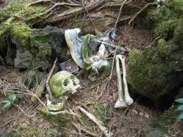 Aokigahara, Jepang - Jurukunci4.blogspot.com