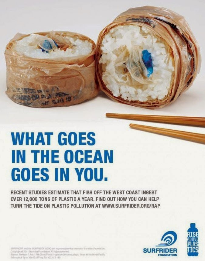 Surfrider Foundation Campanha What goes in the ocean goes in you