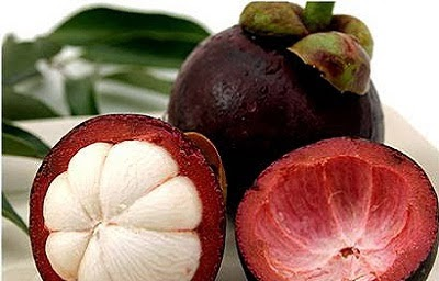 manfaat dan khasiat kulit buah manggis