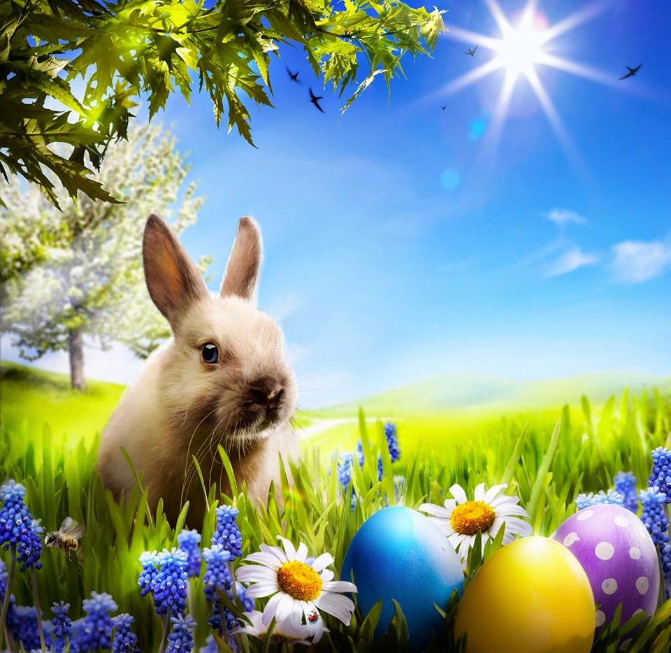 2015 2016 updated easter egg hunting events in metro manila what delectable merienda buffet parlor games with exciting prizes and the much awaited easter egg hunt through their viking inspired village that kids and negle Image collections