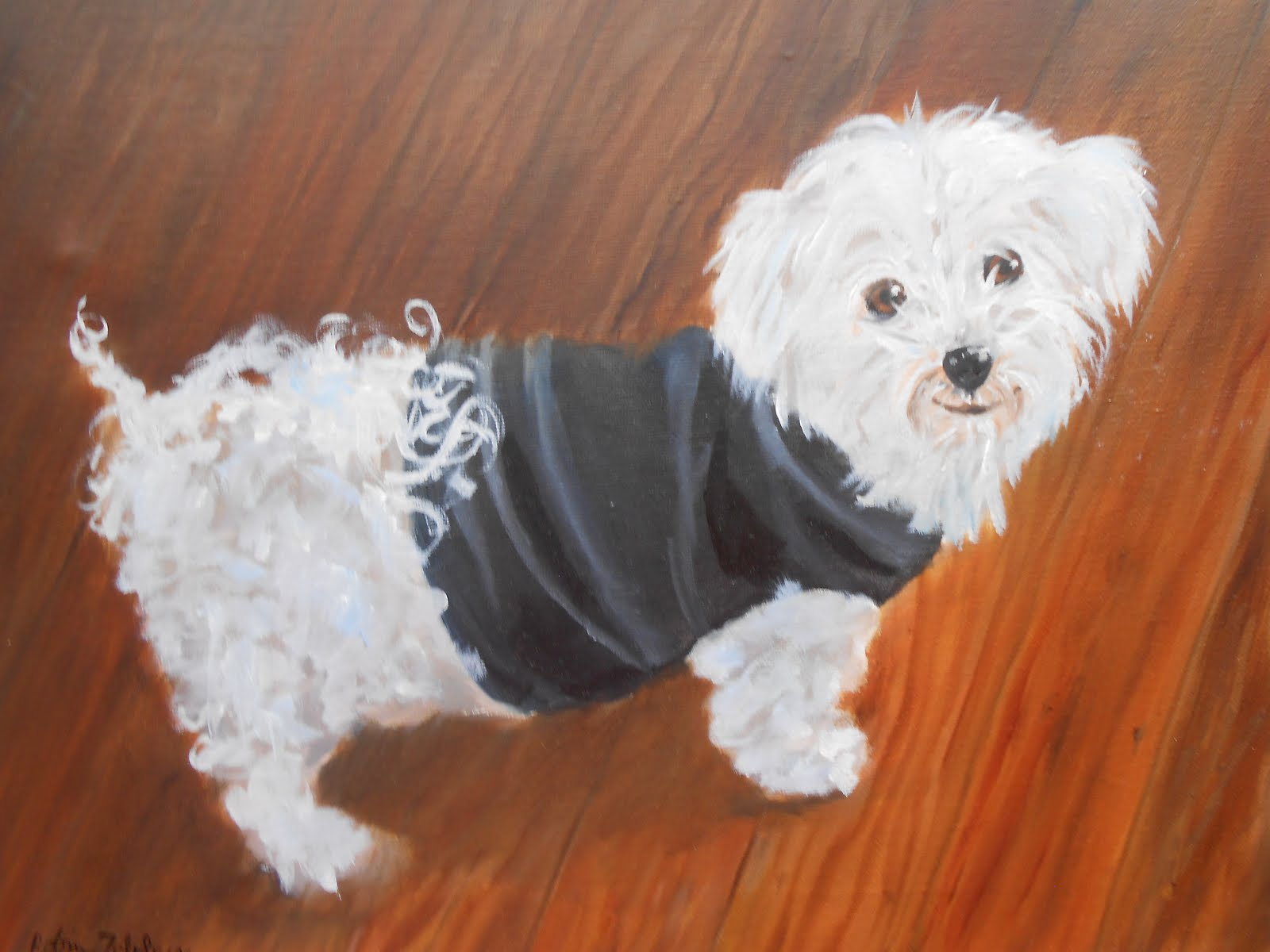 Maltese Dog Pet Portrait by Robin Zebley