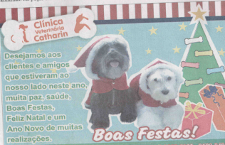 Saiu no Jornal de Bariri