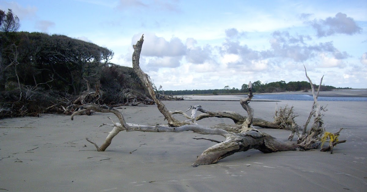 sapelo island jewish dating site The gullah-geechee people of sapelo island are in a battle for the land of their ancestors the local government for the area near savannah, georgia is requesting nearly a 600% increase in.