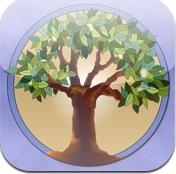 dental tree