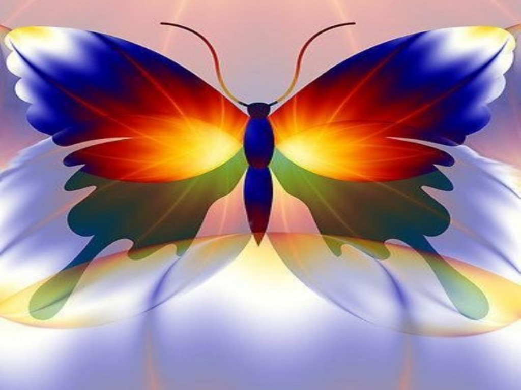 Android Phones Wallpapers Android Wallpaper Butterfly