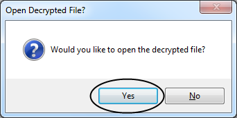 Open decrypted file?