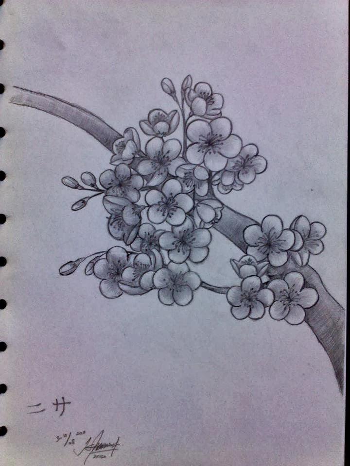 Kalau yang satu ini, karna saya suka dengan bunga sakura. sakura atau