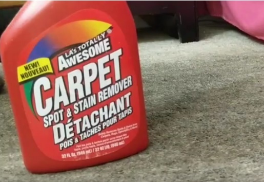 Professional Grade Carpet Cleaning for $2