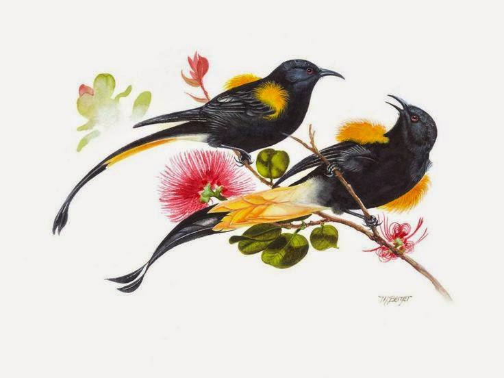 Μυθικά πτηνά που έχουν εξαφανιστεί από τη Γη «αναστήθηκαν» μέσα από καλλιτεχνικές ζωγραφιές.