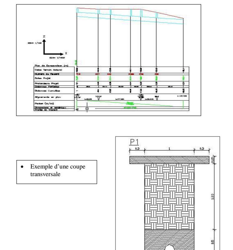 Comment r aliser profil et dimensionner avec covadis en for Assainissement cours pdf