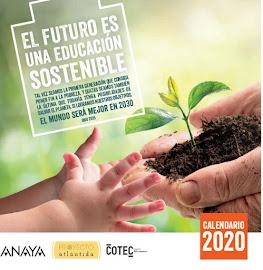 Calendario ODS 2020