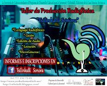 Tsilinkalli Ediciones de la Casa Sonora