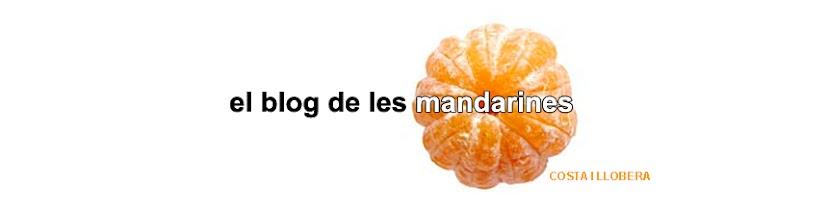 El blog de les mandarines