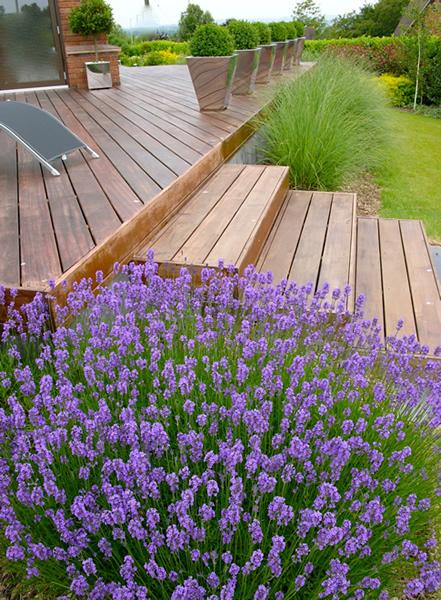 Home and garden modern steps in garden for Rural garden designs