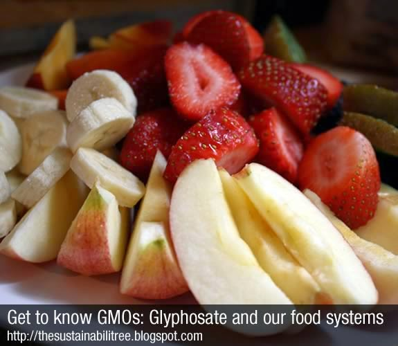 A pile of fruit on a plate that may contain GMOs
