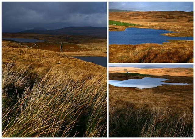 Connemara landscapes © Annie Japaud 2014