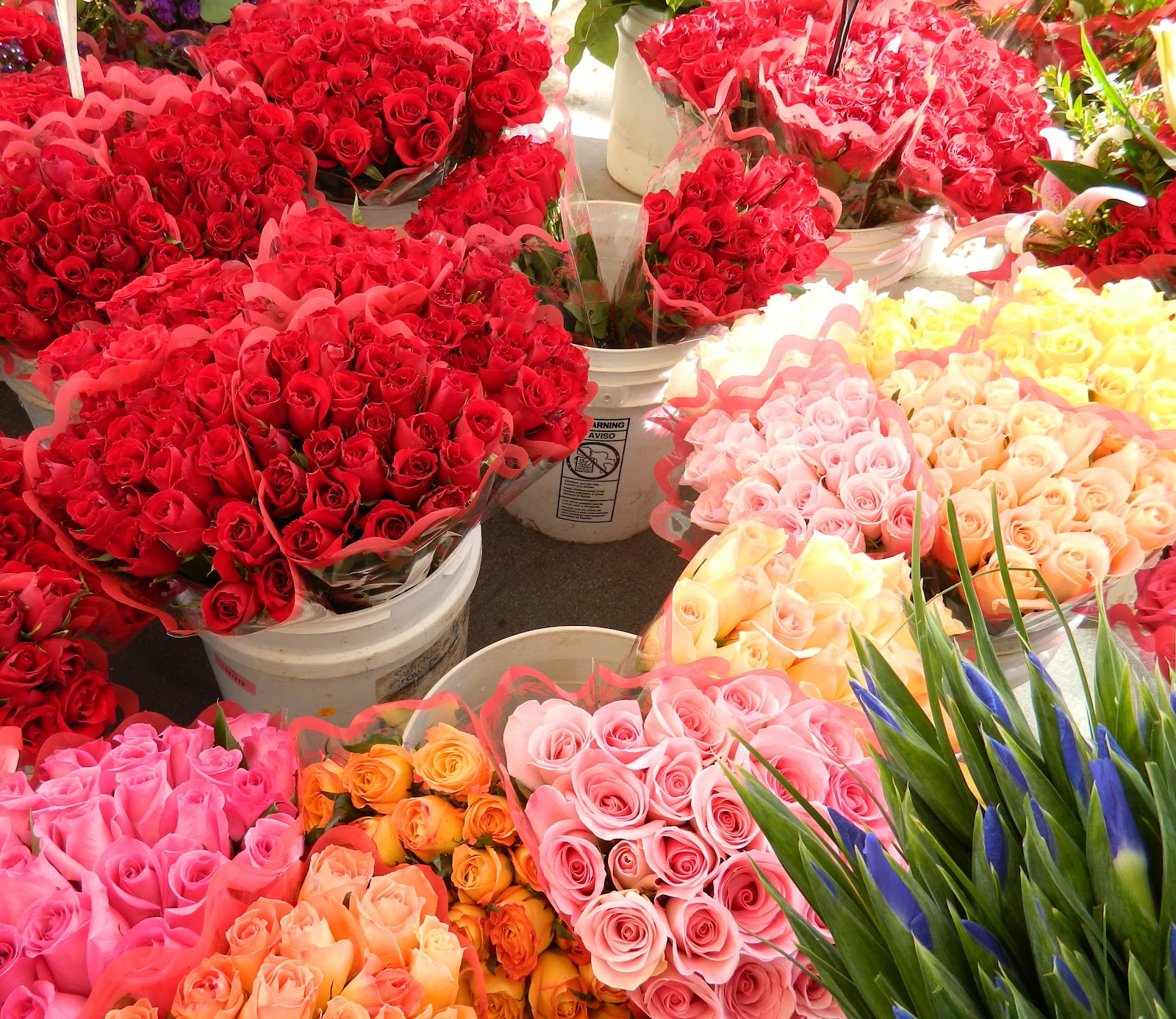 temecula edible arrangements
