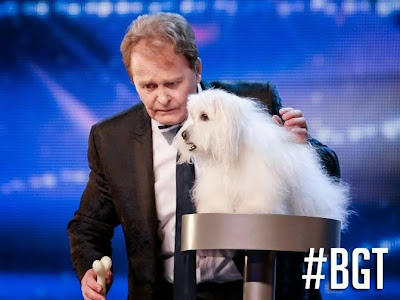 """بالفيديو : كلب """"يتحدث"""" و""""يغني"""" يثير الجدل في بريطانيا"""